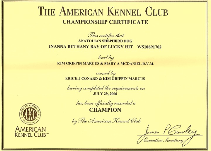 Bethany's AKC Championship Document