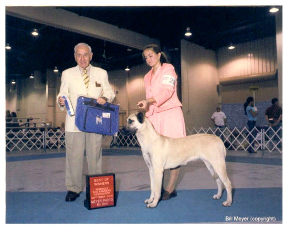 POSEY at Seminole Dog Fanciers show September 11, 2005